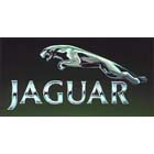 ibusiness clients jaguar